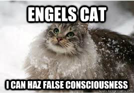 Engels Cat: I Can Haz False Consciousness